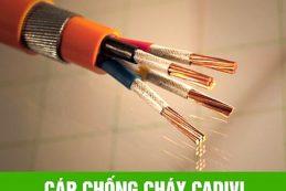 Tim Hieu Ve Cap Dien Chong Chay 1